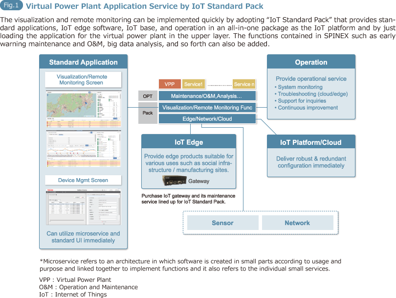 Fig.1: Virtual Power Plant Application Service by IoT Standard Pack
